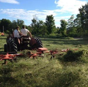 John Moore and his granddaughter Sienna racking hay. Photo courtesy of the Moore family.