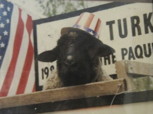The Paquets' ram, Napoleon, rides on the Turkey Farm float in the 1989 parade for Hardwick's 250th anniversary. Photo courtesy of Linda Paquet. Click for larger image.